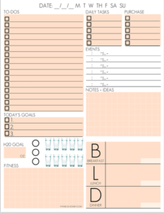 daily organizer page
